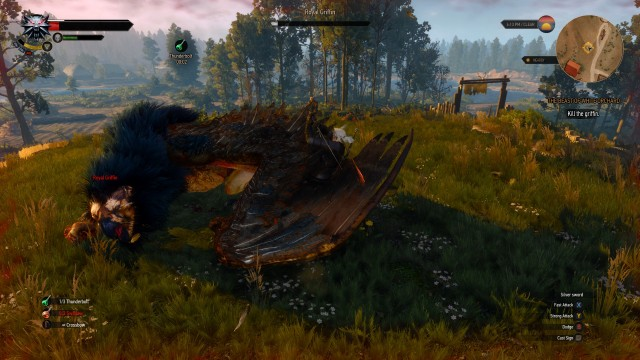 Witcher 3 Griffon
