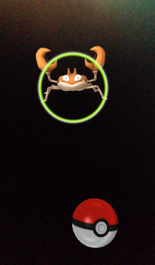 Pokemon GO catching phase
