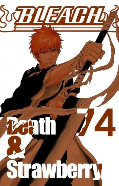 Bleach final volume