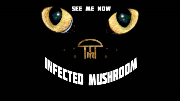 Infected mushroom see me now